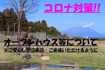 霧島市隼人町神宮4-16-2、万円の売家